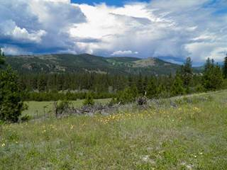 Land for Sale Stevens County, WA - Vacant Lots for Sale in Stevens