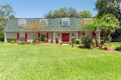 Residential Property for sale in 1201 TERRA MAR DRIVE, Lake Magdalene, FL, 33613
