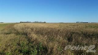 Farm And Agriculture for sale in Carlea RM 457 - 159 acres, RM of Connaught No 457, Saskatchewan