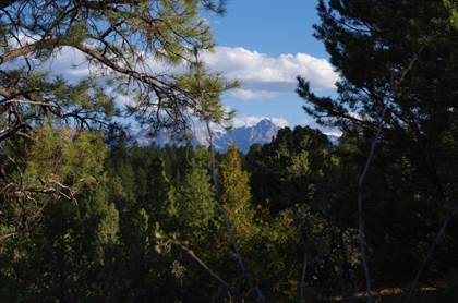 Lots And Land for sale in TBD (Lot 6) Big Canyon Point, Ridgway, CO, 81432