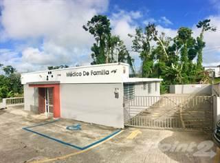 Comm/Ind for sale in Bo. Certenejas, Cidra, PR, 00739