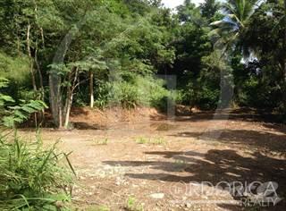 Land for sale in BO. CANOVANILLAS, CARR. 857 KM 4.3, Carolina, PR, 00987