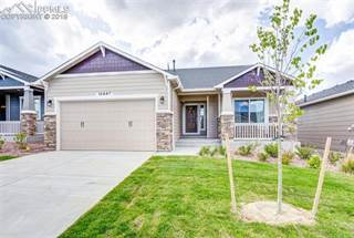 Single Family for rent in 10887 Hidden Brook Circle, Colorado Springs, CO, 80908