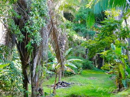 Lots And Land for sale in 14.6 Acres of Development land in Sandy Bay, Roatán, Islas de la Bahía