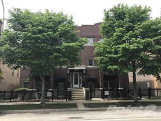 House for rent in 1226 S Blue Island Ave Unit 301 - 2/2 1326 sqft, Chicago, IL, 60608