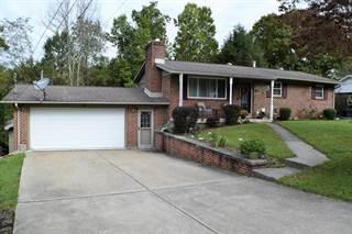 Single Family for sale in 126 CHRISTOPHER DRIVE, Glen Morgan, WV, 25813