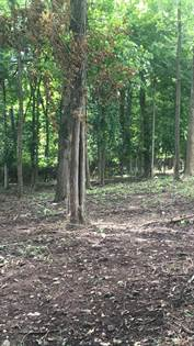 Farm And Agriculture for sale in 1151 hunter Drive, Lancaster, KY, 40444