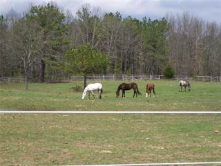 Farm And Agriculture for sale in 19600 Pine Meadow, Raymondville, MO, 65555