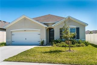 Single Family for sale in 14230 SALTBY PLACE, Spring Hill, FL, 34609