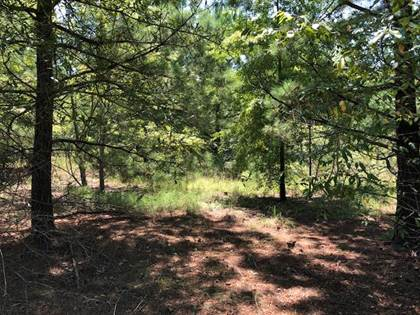 Lots And Land for sale in 0 Norris Road, Warrenton, GA, 30828