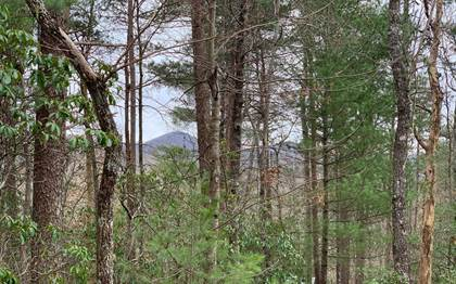 Lots And Land for sale in LT 21 OLD PARKER PLACE, Ellijay, GA, 30536