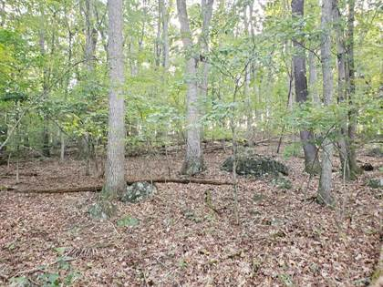 Lots And Land for sale in 14.9 Acres Decator Rd, Fairfield, VA, 24435