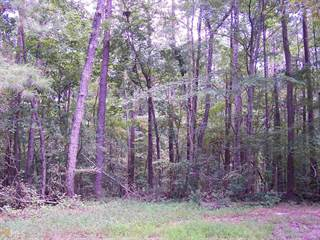 Land for sale in 0 Vernon Grove Rd, Chattahoochee Hills, GA, 30268