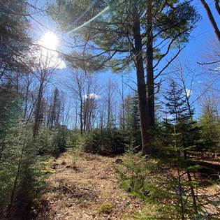 Lots And Land for sale in Lot 11 Forestridge Drive Lot 11, Conquerall Mills, Nova Scotia, B4V 2M1
