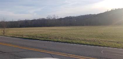 Lots And Land for sale in 5625 HWY 17 N, De Mossville, KY, 41033