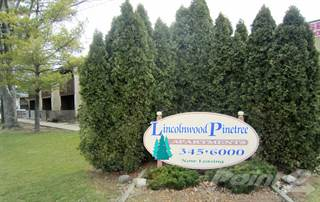 Apartment for rent in Lincolnwood Pinetree Apartments - Two Bedroom One Bath, Charleston, IL, 61920