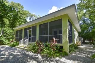 Single Family for sale in 100 Coconut Lane, Plantation Key, FL, 33036