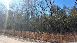 Farm And Agriculture for sale in 000 NW 12th Ct., Bell, FL, 32619
