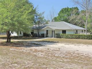 Comm/Ind for sale in 1079 Kushmer Street, Bell, FL, 32619
