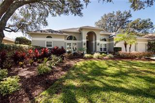 Single Family for sale in 4913 HALLSTEAD WAY, Tampa, FL, 33647
