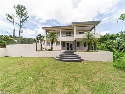 Residential Property for sale in 0 CARRETERA 241 KM 14.6 BARRIO SALSA, Jayuya, PR, 00664