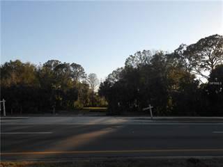 Land for sale in 2352 KEYSTONE ROAD, East Lake, FL, 34688
