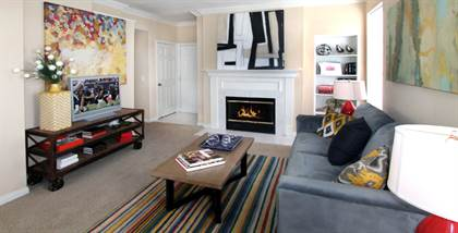 Apartment for rent in 1819 S Braeswood Boulevard, Houston, TX, 77030