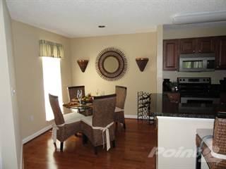 Apartment for rent in Bridgewater, St. Petersburg, FL, 33716