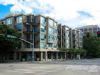 Apartment for rent in Limestone Court - Plan 1B, Bellevue, WA, 98004