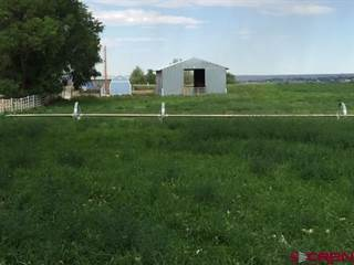 Farm And Agriculture for sale in TBD Alamosa St  Road L, Cortez, CO, 81321