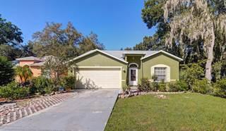 Single Family for sale in 8712 Busch Oaks Street, Tampa, FL, 33617