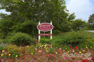 Apartment for rent in Osprey Lane Apartments, Maple Swamp, MA, 02537