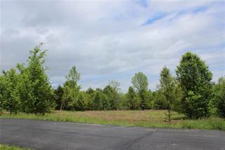 Land for sale in 0 Brushy Hill, St Paul, MO, 63366