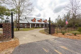 Single Family for sale in 6275 CLEAR CREEK RD, Allentown CCD, FL, 32570