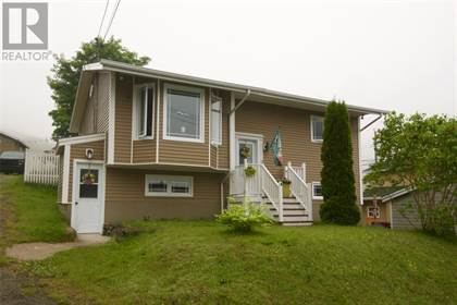 Single Family for sale in 4 WEIR'S Lane, Petty Harbour - Maddox Cove, Newfoundland and Labrador