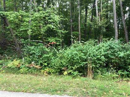 Lots And Land for sale in XXX Vista Dr, Roscommon, MI, 48653