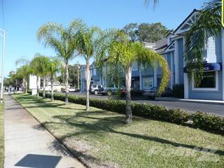 Houses Apartments For Rent In Clearwater Fl Point2 Homes