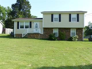 Single Family for sale in 424 S Palmers Chapel Rd, Cottontown, TN, 37048