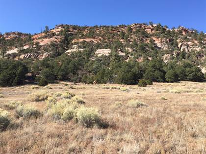 Lots And Land for sale in Lot 3 Box S Ranch Road, Ramah, NM, 87321