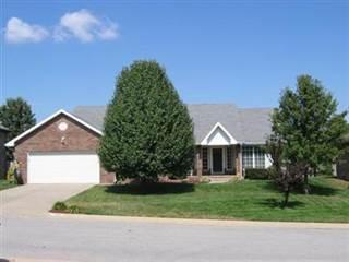 Single Family for sale in 703 Meramec, Nixa, MO, 65714