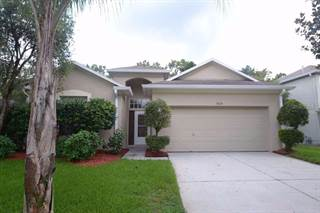 Single Family for sale in 19120 WOOD SAGE DRIVE, Tampa, FL, 33647