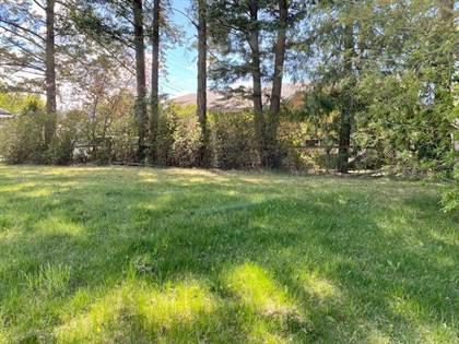 Vacant Land for sale in 311 & 313 8TH AVENUE S, Creston, British Columbia, V0B1G3