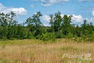 Land for sale in 56 Old Oliphant Road, South Bruce Peninsula, Ontario