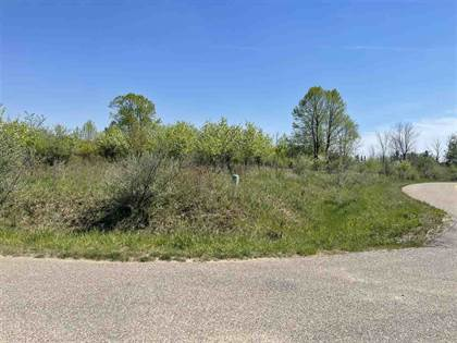 Lots And Land for sale in 36-37 LAKEVIEW CT, Gladwin, MI, 48624