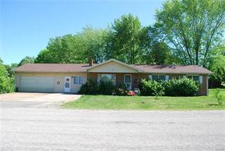 Single Family for sale in 122 Brian Street, Licking, MO, 65542