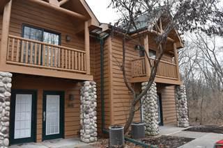 Condo for sale in 2643 North State Route 178 104, North Utica, IL, 61373