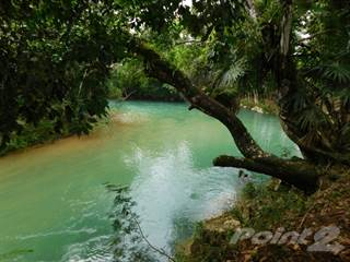 Farm And Agriculture for sale in #2158 - 100 ACRES OF RIVERSIDE LAND CLOSE TO BELMOPAN, CAYO DISTRICT., Frank's Eddy Village, Cayo