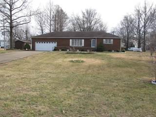Single Family for sale in 501 Kimmel, Elkville, IL, 62932