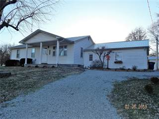 Single Family for sale in 5021 Rockcastle Road, Steeleville, IL, 62288