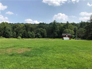 Residential Property for sale in 107 Pine Knob, Canadensis, PA, 18325